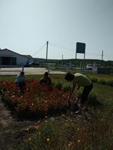 Навчально-виробнича ферма